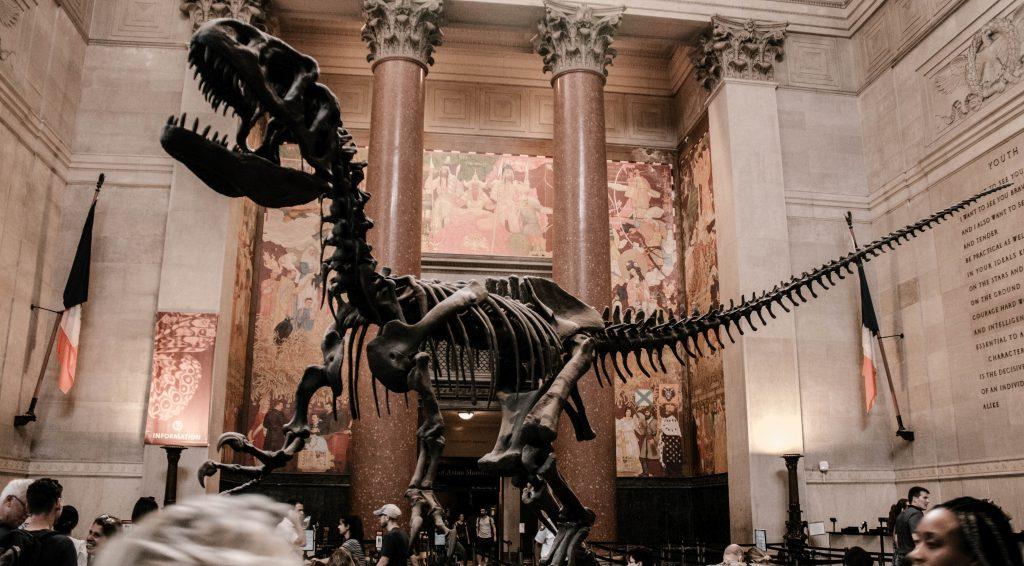 Dinosaurier: ausgestorben - alte weiße Männer? Hoffentlich bald.